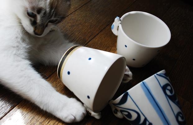 猫と蕎麦猪口